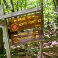 Trail intersections are well marked.- North Point