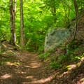 The trail begins rising steadily right from the start.- Noonmark Mountain