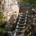 Wooden ladders climb the steepest parts of trail.- Noonmark Mountain