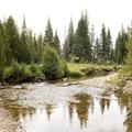 The Colorado River originates just 10 miles away.- Timber Creek Campground