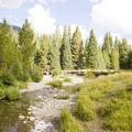 The Colorado River along the trail to Little Yellowstone.- Little Yellowstone via the La Poudre Pass Trail