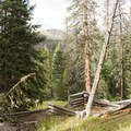 One of Shipler's cabins, a former resident of the valley.- Little Yellowstone via the La Poudre Pass Trail