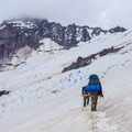 Roped climbers traverse the Lower Emmons Glacier with Little Tahoma above.- Mount Rainier: Emmons-Winthrop Glacier Route