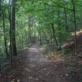 The path is mostly easy walking.- Vickery Creek