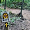 Paths are well marked.- Vickery Creek