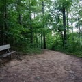 The occasional bench is perfect for resting.- Vickery Creek