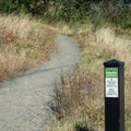 Where the trail splits between hiking only and multi-use trails.- Ridgeline Trail System: Dillard East Trailhead