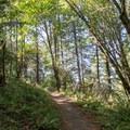 Ridgeline Trail. - Ridgeline Trail System: Dillard East Trailhead