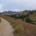 You can reach Cecret Lake from here as well.- Albion Meadows Trail to Germania Pass