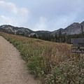 Hiking to Albion Meadow.- Albion Meadows Trail to Germania Pass