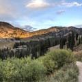 The Albion Meadows Trail.- Albion Meadows Trail to Germania Pass