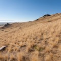 Most of Antelope Island is open grassland. View south near the trailhead.  - Frary Peak