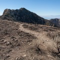 The final section of the trail drops below the rocky ridge, then climbs up the west side of the peak.  - Frary Peak
