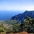 Views of the ocean and the nearby cliffs start right from the trailhead.- Alaka'i Swamp via Pihea Trail