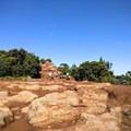 The trail descends steeply on rocks and mud.- Alaka'i Swamp via Pihea Trail