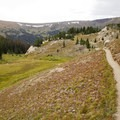 Alpine meadows marking the trail near the Chapin Pass Trailhead.- Chapin, Chiquita + Ypsilon (CCY Route)