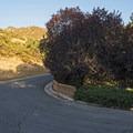 Walking up Canyon Winds Lane after parking on Oak Canyon Drive.- Heughs Canyon Trail