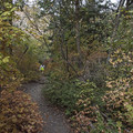 Heughs Canyon Trail.- Heughs Canyon Trail