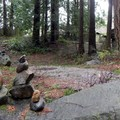 The garden lies in a tranquil grove of trees right in Bellingham.- Big Rock Garden