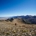 Hiking the crest of the Rubies.- Ruby Crest Trail