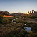 A freshwater spring near Furlong Lake.- Ruby Crest Trail