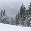 Looking down the large, upper clearing.- Gunsight Ridge Backcountry Ski via Pocket Creek
