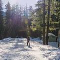 Leaving the Pocket Creek trailhead and skiing east on FS Road 3540.- Gunsight Ridge Backcountry Ski via Pocket Creek