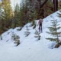 The skin track as it leaves FS Road 3540.- Gunsight Ridge Backcountry Ski via Pocket Creek