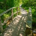 Several bridges and boardwalks cross the swampy areas.- Saugerties Lighthouse