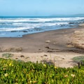 Overlooking the north end of the beach.- Morro Strand State Beach