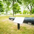 One of many canons on display.- Sackets Harbor Battlefield