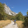 The early part of the trail is exposed, but it's not long before the trees hang overhead.- Little Cottonwood Trail