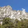 Views from the Little Cottonwood Trail.- Little Cottonwood Trail