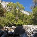 Little Cottonwood Creek creates a bunch of smaller waterfalls along the way.- Little Cottonwood Trail