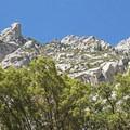 North rim of Little Cottonwood Canyon.- Little Cottonwood Trail
