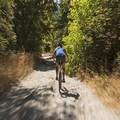 Fun ride down on the mountain bike. - Little Cottonwood Trail