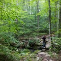 Creek crossing in Trout Brook Valley Preserve.- Trout Brook Valley Preserve Mountain Biking