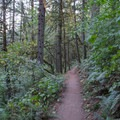 Ridgeline Trail System.- Ridgeline Trail System: Blanton Trailhead