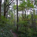 Ridgeline Trail- Ridgeline Trail System: Blanton Trailhead