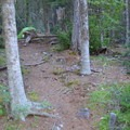 One of three campsites east of the food preparation area.- Head of Bowman Lake Campground