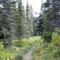 Flat section of trail.- Cobalt Lake
