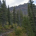 The trail begins to gain elevation quickly after Rockwell Falls. See Sinopah Mountain to the west on your way up.- Cobalt Lake