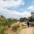 The Nehalem Jetty Trail.- Nehalem Jetty Trail