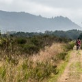 The trail is great for bikes and horses.- Nehalem Jetty Trail