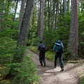Beginning the trail near Lake McDonald.- Sperry Trailhead to Sperry Chalet
