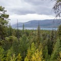 Lake McDonald seen from a viewpoint through the trees.- Sperry Trailhead to Sperry Chalet