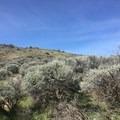 Raw Ridge Crest Trail.- Umtanum Ridge Crest Trail