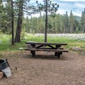 Typical meadow view.- Fallen Leaf Lake Campground
