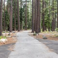 Sites are well spaced and large.- Fallen Leaf Lake Campground