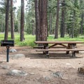 Campsite with a meadow view.- Fallen Leaf Lake Campground